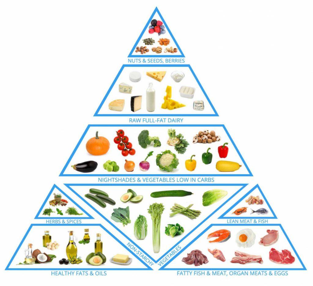 דיאטה קטוגנית, המדריך השלם למתחיל 1